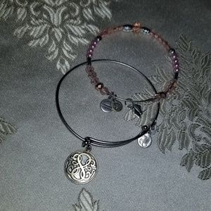 Path of life Alex and ani